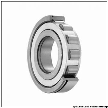 20 mm x 52 mm x 15 mm  FBJ NF304 cylindrical roller bearings
