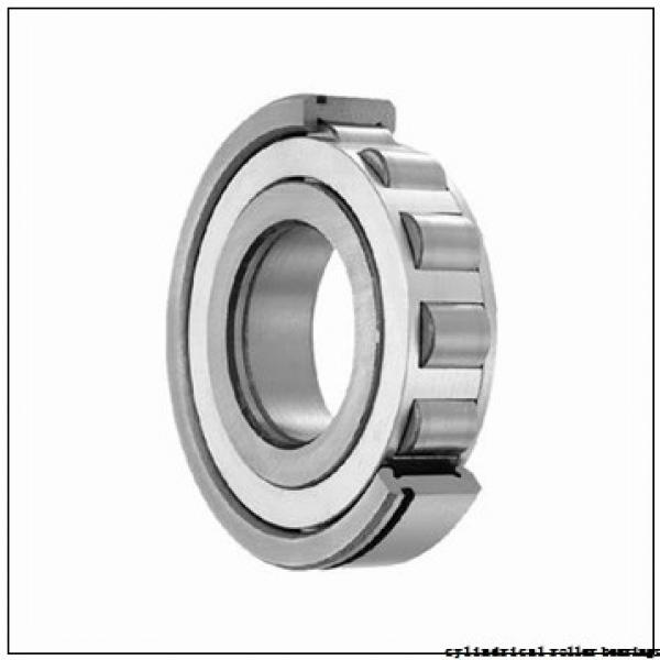75 mm x 130 mm x 25 mm  NACHI NU 215 E cylindrical roller bearings #1 image
