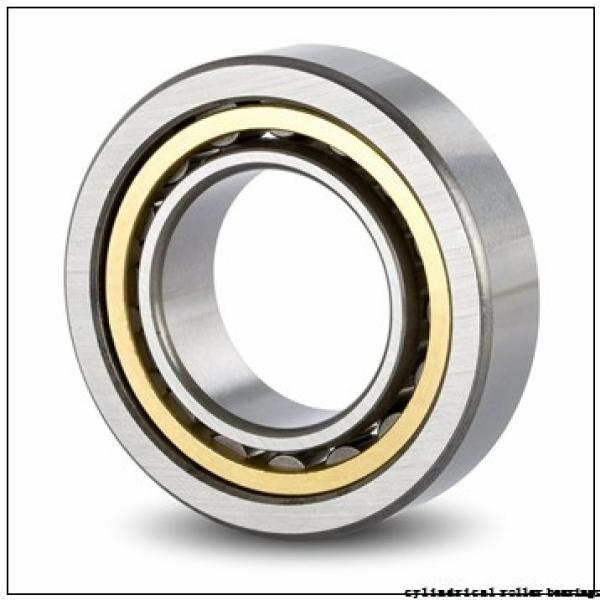 45 mm x 100 mm x 25 mm  Fersa NUP309FMN cylindrical roller bearings #1 image